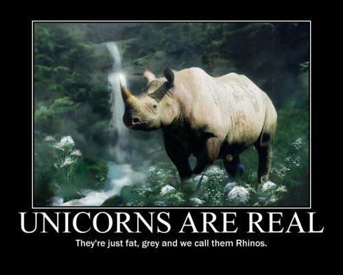 rhino-unicorn.jpg